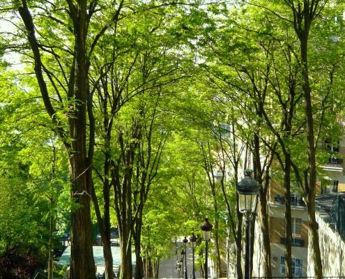 Montmartre Paris rue de Montmartre