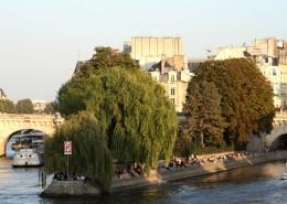 Les îles parisiennes Île de la Cité Square du Vert Galant Paris