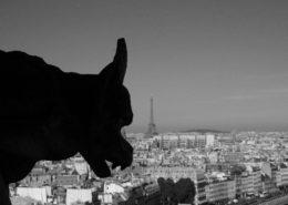 Notre Dame de Paris Tours Chimères Gargouilles